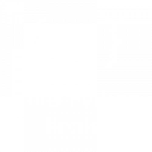 LP Brain Logo 800x800 white-01